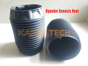 Hyundai-Genesis-Rear-Dust-Cover-Boot