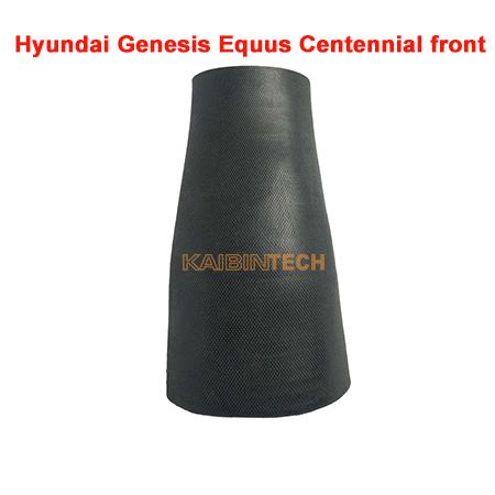 Hyundai-Genesis-Equus-Centennial-front-rubber-bladder