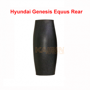 Hyundai-Genesis-Equus-Centennial-rear-rubber-bladder-کمک-فنر-جنسیس-کمک-فنر-سنتنیالکمک-فنر-جنسیس-کمک-فنر-سنتنیال