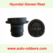 Hyundai-air-shock-absorber-repair-kit-Plastic-head-for-Hyundai-Genesis-shock-absorber