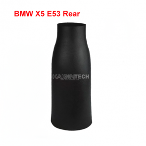 X5-rear-air-suspension-rubber-bladder